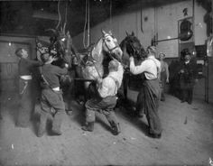 1905 U.S. Fire ponies from Denver FD Engine Co. #5 ready to respond to an alarm.