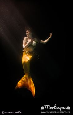 Mermaid by moonlight - mermaid performer Melusine of the Merlesque UK professional mermaids poses underwater in a shaft of moonlight, in a yellow and orange tail. Find out more about Merlesque at: http://www.realmermaids.co.uk