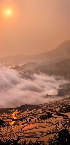 Sunrise Over Rice Terrace - Yuanyang, China