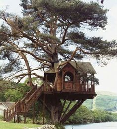 awesome-tree-house-