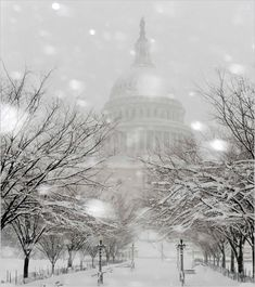 US Capitol Building In Washington, DC On A Snowy Day!