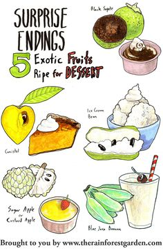 Fruits that actually taste and feel like pumpkin pie, vanilla ice cream, chocolate pudding and more!