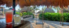 Swings+Bar= I'm going down    Cotorros Bar. El Dorado Seaside Suites by Karisma. Riviera Maya Mexico