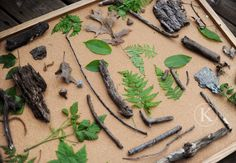 Use bulletin board for making nature collage.