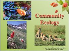 """55-slide PowerPoint with Notes for Teacher and Student.  Ecology is one of the """"must-teach"""" topics for any biology or life science class. The ecological inter-relationships that occur in nature are fundamental to an understanding of our world and how life interacts with the physical environment as well as with other living organisms. Ecology topics, such as global warming, ozone destruction, greenhouse gases, and habitat destruction, dominate the news."""