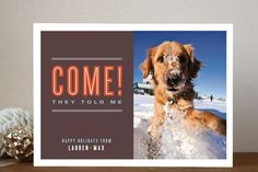 """Click Image Above To Purchase: """"come,"""" They Told Me Holiday Photo Cards"""