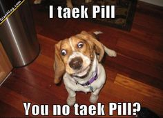 Hilarious images of the week -55 pics- You No Take A Pill ?