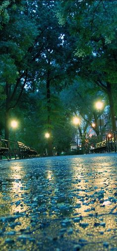 Union Square Park on a rainy day in New York City • photo: Nathaniel Landau on Flickr