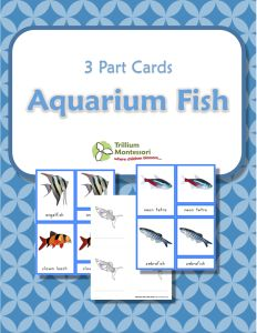 Aquarium Fish- Montessori 3 Part Cards with color illustrations and blacklines too.  {FREE}
