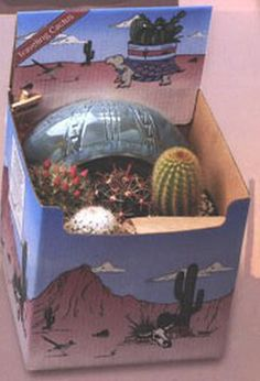 Cactus Planting Kit - This kit contain 4 cacti, a large 9″ Southwestern designed ceramic planter, soil, decorative stones, and an Arizona sign. Everything you need for a small cactus desk garden. Now you can own a piece of the American Southwest! Desert Canyon Gifts presents a selection of Cactus Growing Kits. Most cactus planting kits come complete with cacti, the right type of soil, decorative pebbles, planter, and a unique Arizona sign. $52.95