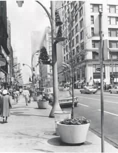 PHOTO - CHICAGO - STATE STREET - LOOKING NORTH FROM WEST SIDE SIDEWALK - NOTE WIEBOLDT'S DEPARTMENT STORE ON RIGHT - 1962