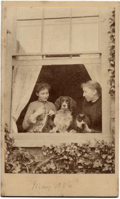 vintage everyday: Interesting Old Photographs of Dogs and Their Owners.  There is a cute tuxedo cat in this one, too.