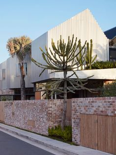 Bismarck House in Sydney's Bondi by Andrew Burges Architects | Yellowtrace