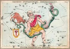 Card 12 Taurus Poniatowski, Serpentarius (i.e. Ophicuchus), Scutum Sobiesky and Serpens - Urania's Mirror