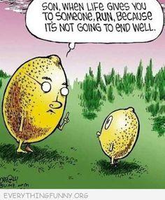 funni stuff, lemons, life, laugh, giggl, humor, smile, quot, thing