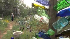 Elayne Lansford's Bottle World healing garden is a tribute to triumph over life-threatening illness and the power of healing through gardening.