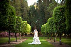 Wedding at Bok Tower Gardens- Lake Wales, FL