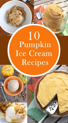 10 Pumpkin Ice Cream Recipes for the Fall - from Pumpkin Spice, to Pumpkin Pie, to Pumpkin Dark Chocolate Chip, you will find every recipe you need. www.scoopadventures.com