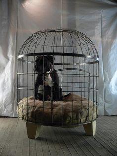 Bird Cage Custom Dog Kennel Dog Bed Pet Accessory