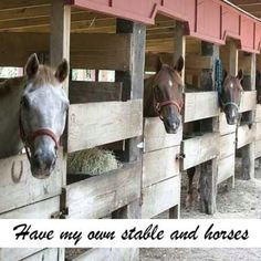 #horses #country #bucket list