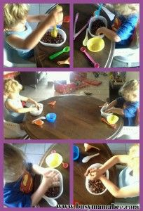 Sensory play with fava beans