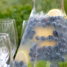 blueberry lemonade with fresh mint.
