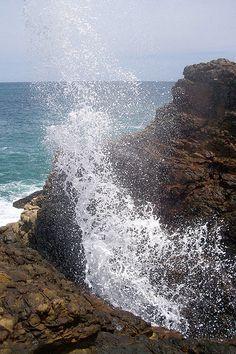indian ocean, beauti sri, natur beauti, lanka wwwsecretlankacom, sri lanka, blow hole