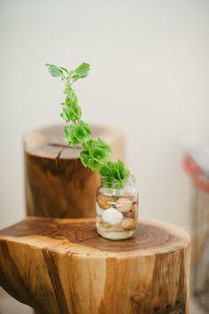Tiny plants | Photography: Yazy Jo - yazyjo.com  Read More: http://www.stylemepretty.com/living/2014/09/22/la-la-lovely-home-tour/