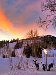 Deer Valley Resort @ Park City, UT  Stein Erikson Lodge, Skiing, Snowmobiling, Amazing Food!