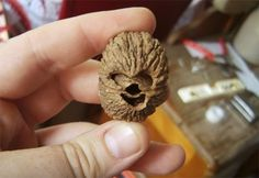This Walnut Looks Like Chewbacca