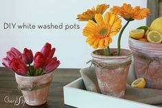 DIY white washed pots