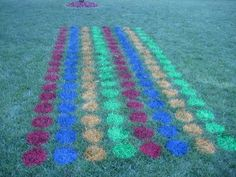 Party-sized lawn Twister made with lawn marking pant and a bucket as a stencil!