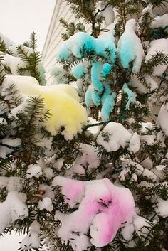 Make snow paint - and decorate outdoors!