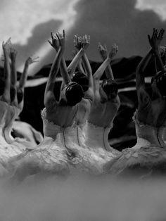 American Ballet Theatre - Swan Lake