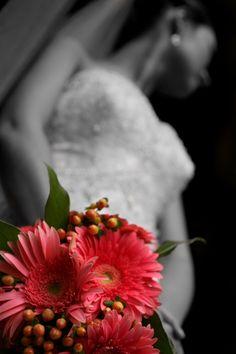 gerber daisy wedding day