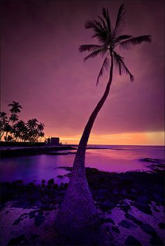 Honaunau (City of Refuge) at twilight. #Hawaii