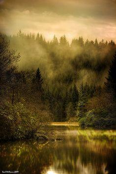 Autumn Mist, Loch Ard, Trossachs, Scotland