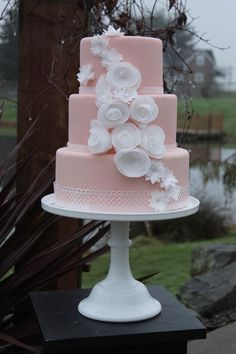 Three Tiered Pastel Pink Cake with White Flowers