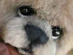 OOAK Bear. Kimbearlys  (sold)