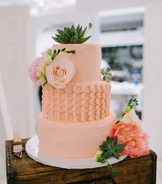 pink cake with succulents + flowers