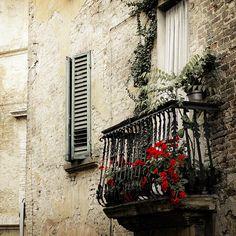 window, balconies, colors, shutter, red flowers, door, red roses, cottage life, bricks