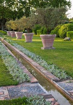 RILL SURROUNDED BY STACHYS LANATA AND TERRACOTTA CONTAINERS PLANTED WITH OLIVE TREES at LES CONFINES IN PROVENCE, FRANCE by DESIGNER DOMINIQUE LAFOURCADE