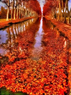 Canal de Garonne, France