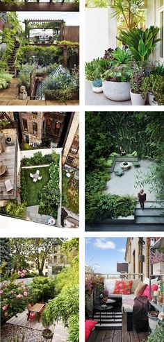 She needs a supply of fresh organic fruits/veggies and prefers to grow her own-beautiful urban gardens
