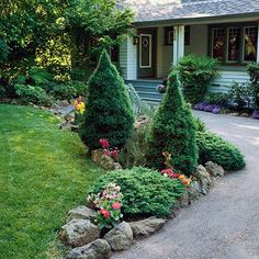 Driveway landscaping and curb appeal ideas on pinterest for Slow growing trees for front yard