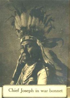Chief Joseph by shark nose