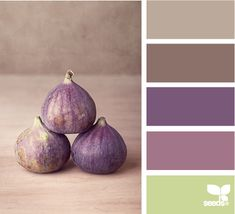 fig hues color palettes, purple design, design seeds, color schemes, bedroom colors, purple colour scheme, kitchen purple, colour inspiration, fig hue