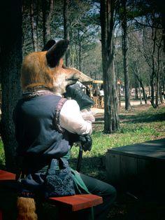Renaissance Faire Fox