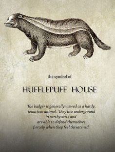 hufflepuff pride. That's right, fools!