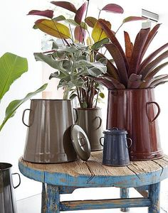 Stool made of scrap wood with tin milk cans with plants #blue #brown #plants #wood